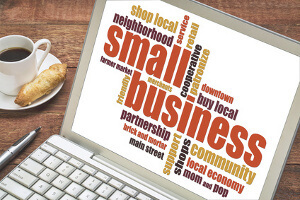 Small Business Consolidator